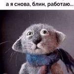 Аватар NikitANik